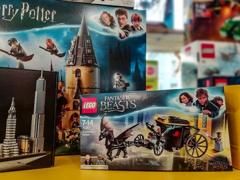 Lego Fantastic Beasts /Harry Potter